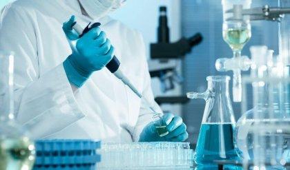 MOL Group launches its renewed non-phthalate polypropylene portfolio